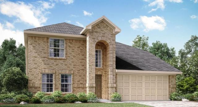 1223 Timberfalls Drive, Anna, TX 75409 (MLS #14011264) :: RE/MAX Landmark
