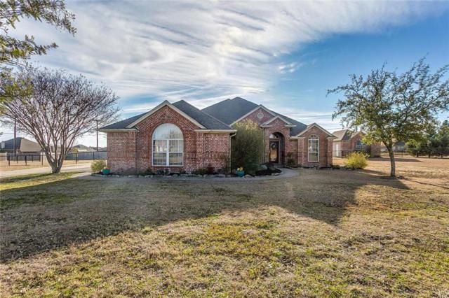 164 Lakeview Drive, Aledo, TX 76008 (MLS #14011695) :: Kimberly Davis & Associates