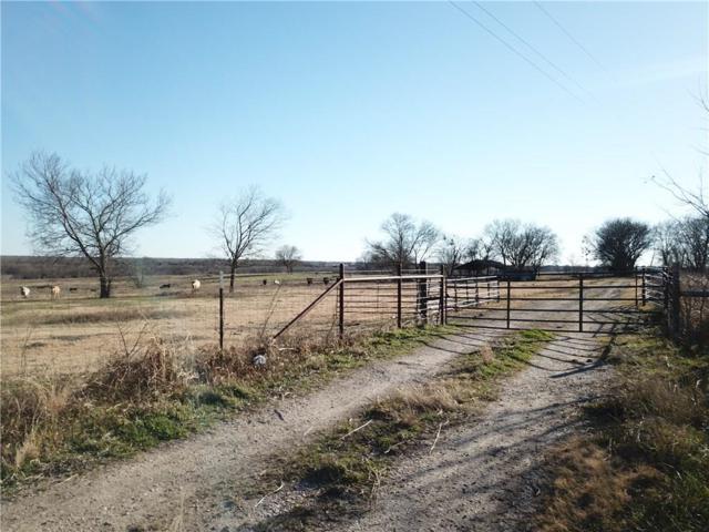 341 Wickliffe Road, Ferris, TX 75125 (MLS #14012174) :: The Hornburg Real Estate Group