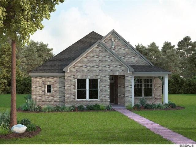 4822 Blackwood Cross Lane, Arlington, TX 76005 (MLS #14012748) :: Kimberly Davis & Associates