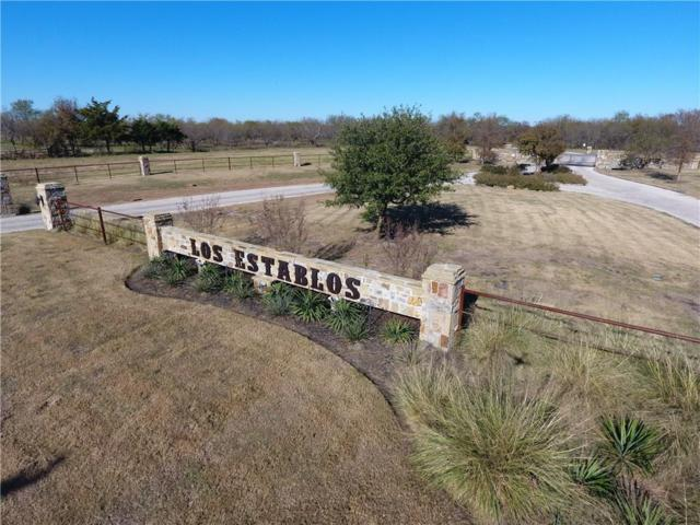 400 Longhorn Trail, Royse City, TX 75189 (MLS #14012796) :: The Heyl Group at Keller Williams