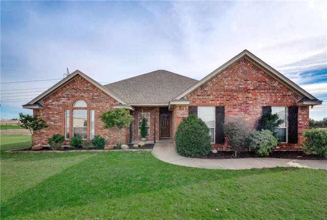 115 Deerchase Court, Azle, TX 76020 (MLS #14013429) :: The Daniel Team