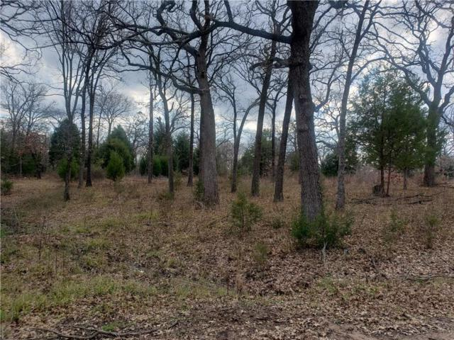 6119 Tejas Drive, Mabank, TX 75156 (MLS #14013937) :: The Mitchell Group