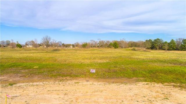 Lot 17 Pr 7001, Wills Point, TX 75169 (MLS #14014147) :: The Mitchell Group