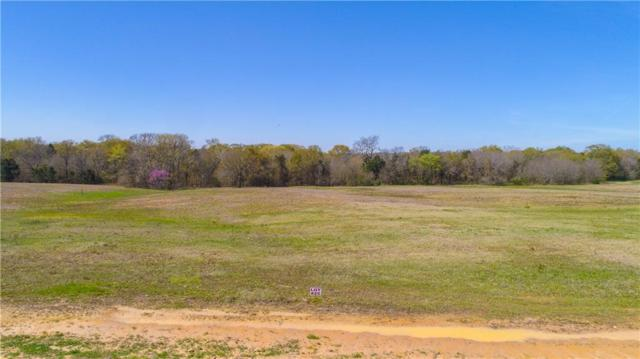 Lot 25 Pr 7001, Wills Point, TX 75169 (MLS #14014846) :: The Heyl Group at Keller Williams