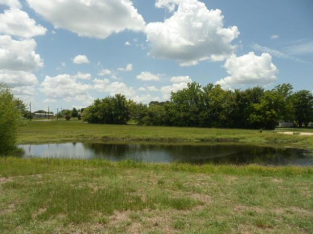 Lot 15 White Dove, Quitman, TX 75783 (MLS #14015390) :: Robinson Clay Team