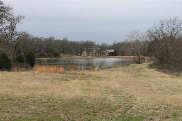 1187 Crystal Lake Drive, Wills Point, TX 75169 (MLS #14016021) :: The Welch Team