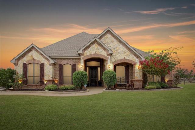 13801 Megan Drive, Justin, TX 76247 (MLS #14016148) :: Kimberly Davis & Associates