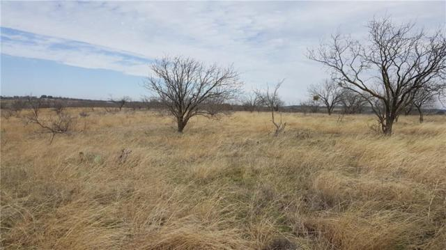 TBD Hawk Wood Court, Comanche, TX 76442 (MLS #14018929) :: The Mitchell Group