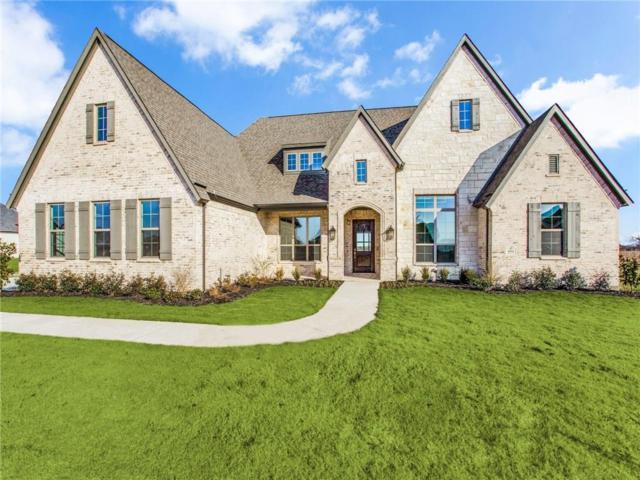 4604 Whitestone Drive, Parker, TX 75002 (MLS #14019091) :: Robbins Real Estate Group