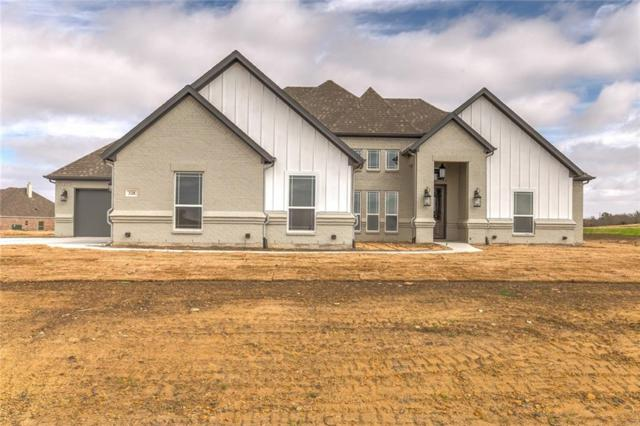 328 Palo Alto Drive, Springtown, TX 76082 (MLS #14019665) :: RE/MAX Town & Country