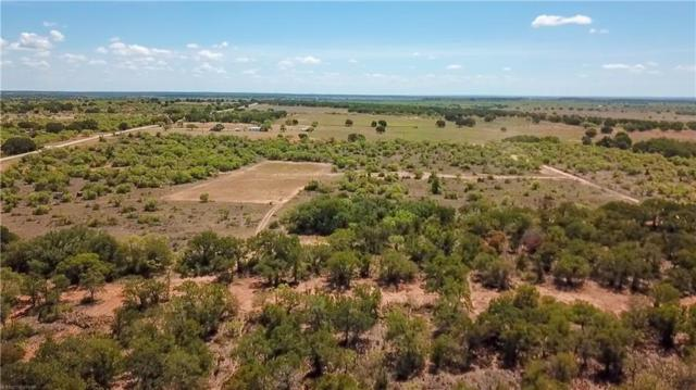Trct 6 Cr 232, Brownwood, TX 76801 (MLS #14019733) :: RE/MAX Town & Country
