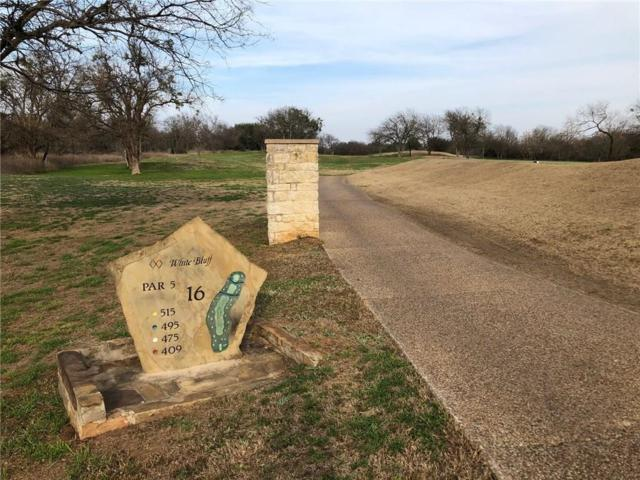 38098 Misty Ridge Drive, Whitney, TX 76692 (MLS #14020234) :: Team Hodnett