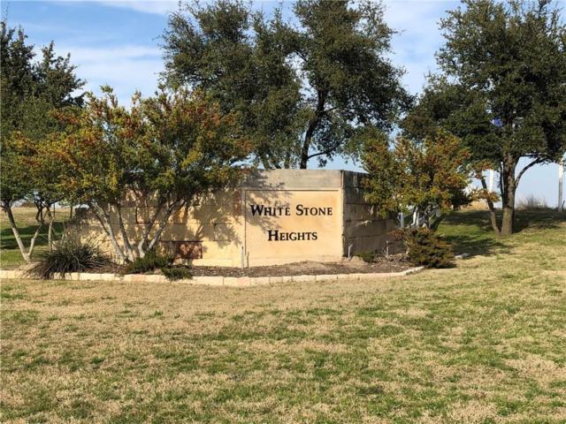 11032 Hawkins Home Boulevard, Benbrook, TX 76126 (MLS #14020291) :: Potts Realty Group