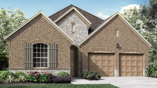 5504 Kildare Court, Mckinney, TX 75071 (MLS #14021151) :: Kimberly Davis & Associates