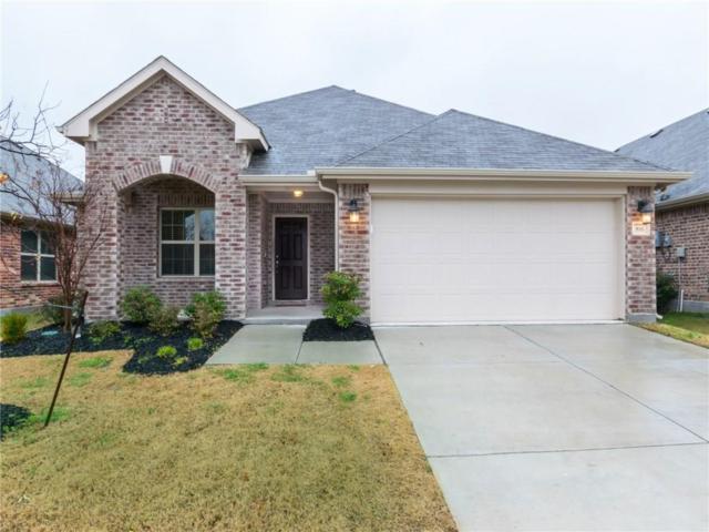 816 Kinghaven Drive, Little Elm, TX 75068 (MLS #14021385) :: RE/MAX Landmark