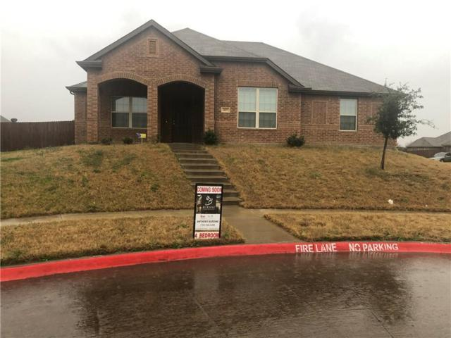 1677 Ginger Drive, Lancaster, TX 75146 (MLS #14021693) :: The Chad Smith Team