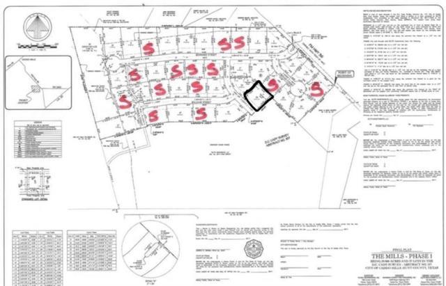 1003 Sinopa Street, Caddo Mills, TX 75135 (MLS #14022366) :: RE/MAX Town & Country