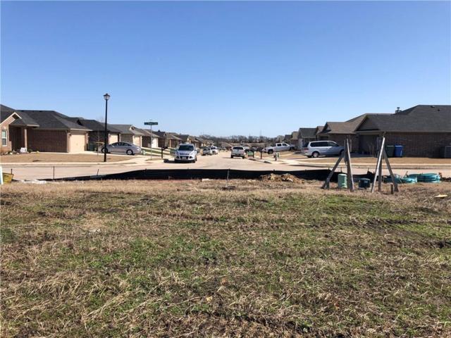 2216 Peggy's Cove, Sherman, TX 75092 (MLS #14022371) :: Kimberly Davis & Associates
