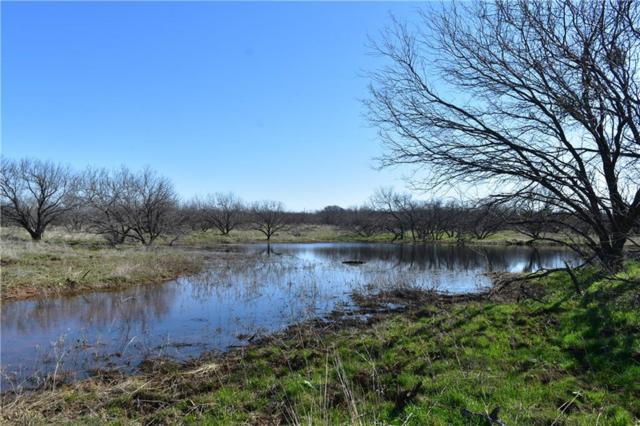 Tr 2 Davis Rd, Archer City, TX 76351 (MLS #14022454) :: Frankie Arthur Real Estate