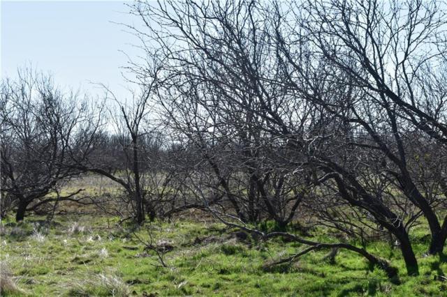 Tr 3 Davis Rd, Archer City, TX 76351 (MLS #14022490) :: Frankie Arthur Real Estate