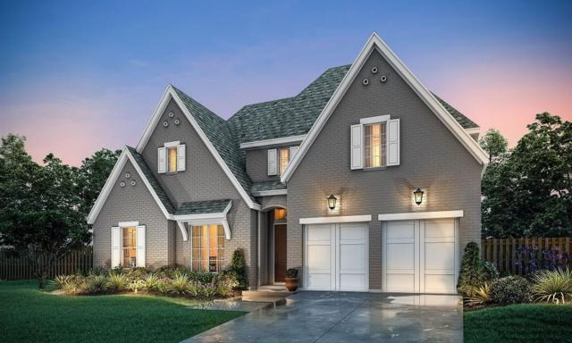 8606 Gerbera Daisy, Frisco, TX 75035 (MLS #14022777) :: Baldree Home Team