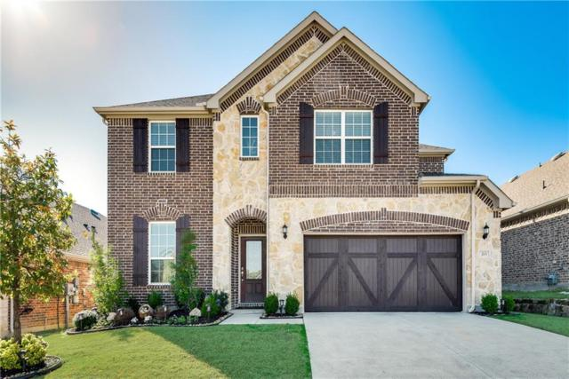 213 Cielo Azure Lane, Lewisville, TX 75067 (MLS #14023201) :: Kimberly Davis & Associates