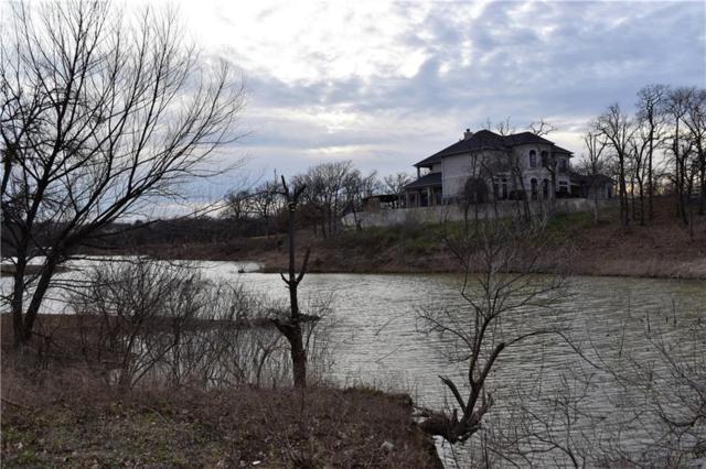 9 Shorehaven Lane, Hickory Creek, TX 75065 (MLS #14023439) :: The Hornburg Real Estate Group