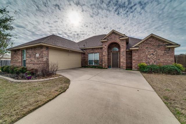 6406 Sunshine Court, Midlothian, TX 76065 (MLS #14023533) :: NewHomePrograms.com LLC