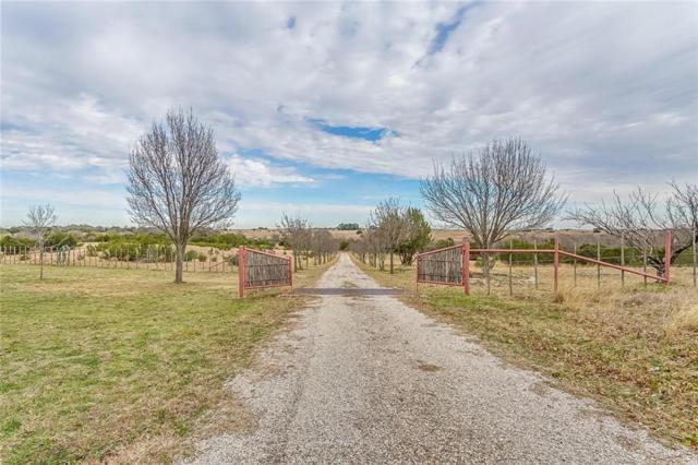 2979A W Lambert Road, Weatherford, TX 76088 (MLS #14023759) :: Magnolia Realty