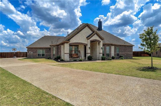 1341 Willard Lane, Celina, TX 75009 (MLS #14023874) :: Kimberly Davis & Associates