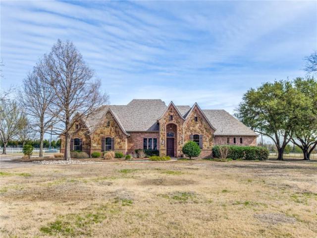 11 Brookhaven Drive, Lucas, TX 75002 (MLS #14024858) :: Frankie Arthur Real Estate