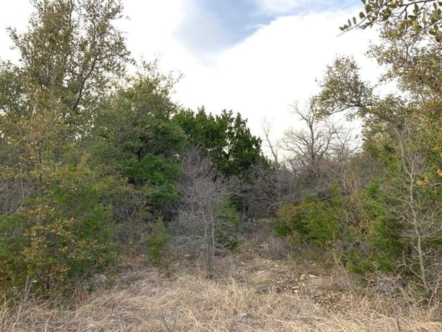 1720 Compass Way, Bluff Dale, TX 76433 (MLS #14024982) :: The Hornburg Real Estate Group