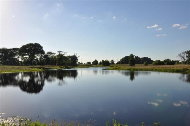 TBD Cr 2425, Como, TX 75431 (MLS #14025054) :: The Hornburg Real Estate Group