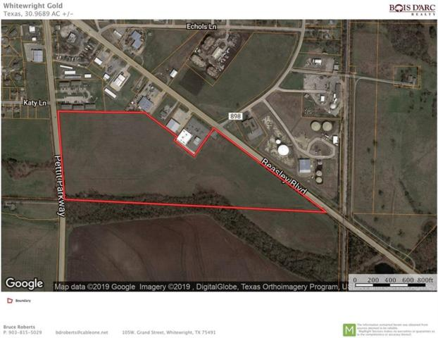 301 S Us Highway 69, Whitewright, TX 75491 (MLS #14025062) :: The Hornburg Real Estate Group