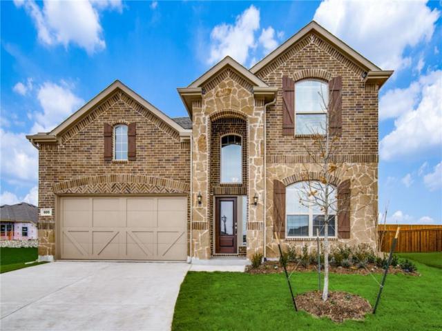 6011 Gloucester Drive, Celina, TX 75009 (MLS #14025077) :: Kimberly Davis & Associates