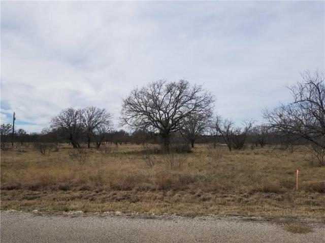 LOT382 Feather Bay Drive, Brownwood, TX 76801 (MLS #14025431) :: Frankie Arthur Real Estate