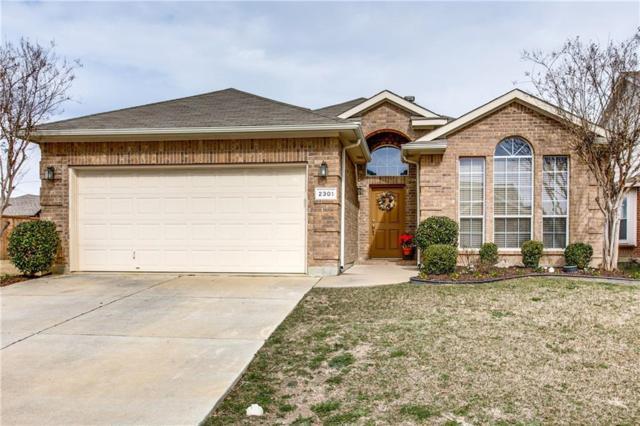 2301 Charisma Drive, Fort Worth, TX 76131 (MLS #14025685) :: The Heyl Group at Keller Williams