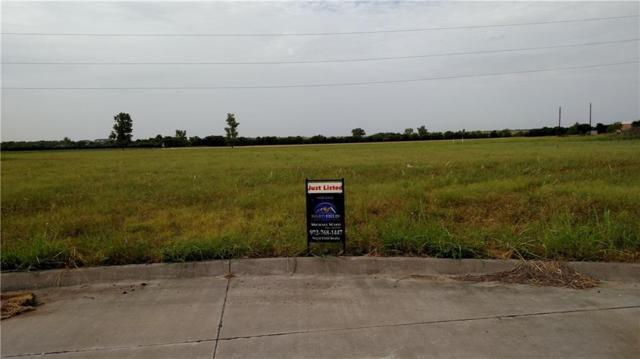 2770 Capital Street, Wylie, TX 75098 (MLS #14026533) :: The Heyl Group at Keller Williams