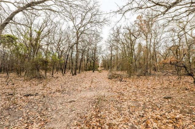 221 Timber Oaks Lane, Boyd, TX 76082 (MLS #14026542) :: All Cities Realty