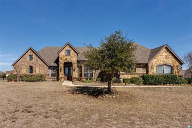 4216 San Pedro Court, Fort Worth, TX 76179 (MLS #14026626) :: RE/MAX Town & Country