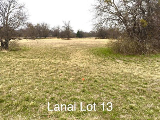 Lot 13 Lanai Drive, Runaway Bay, TX 76426 (MLS #14026913) :: All Cities Realty