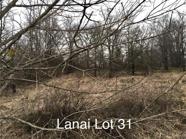 Lot 31 Lanai, Runaway Bay, TX 76426 (MLS #14026928) :: RE/MAX Landmark