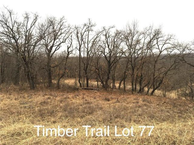 Lot 77 Timber Trail, Runaway Bay, TX 76426 (MLS #14027000) :: The Chad Smith Team