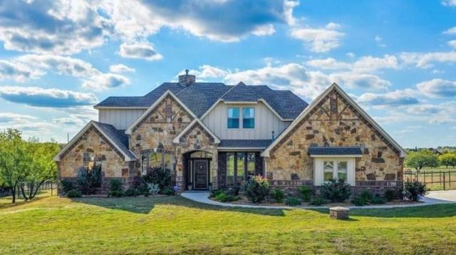395 Scenic View Drive, Aledo, TX 76008 (MLS #14027848) :: Potts Realty Group