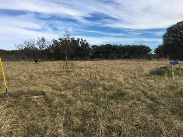 TBD762 Feather Bay, Brownwood, TX 76801 (MLS #14028095) :: The Heyl Group at Keller Williams
