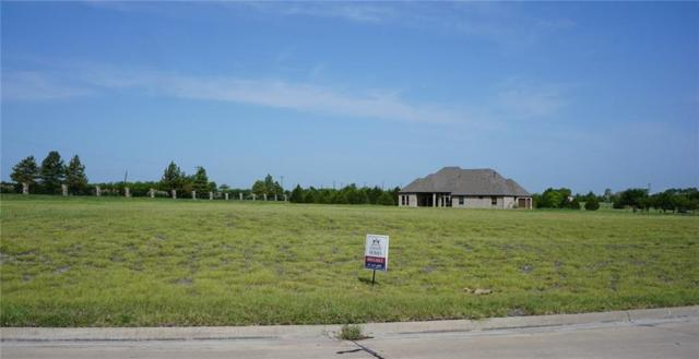 1025 Kingsbridge Lane, McLendon Chisholm, TX 75032 (MLS #14028379) :: The Chad Smith Team
