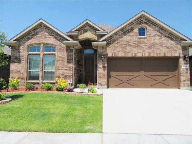 2026 Sorrento Lane, Lewisville, TX 75077 (MLS #14028788) :: Hargrove Realty Group