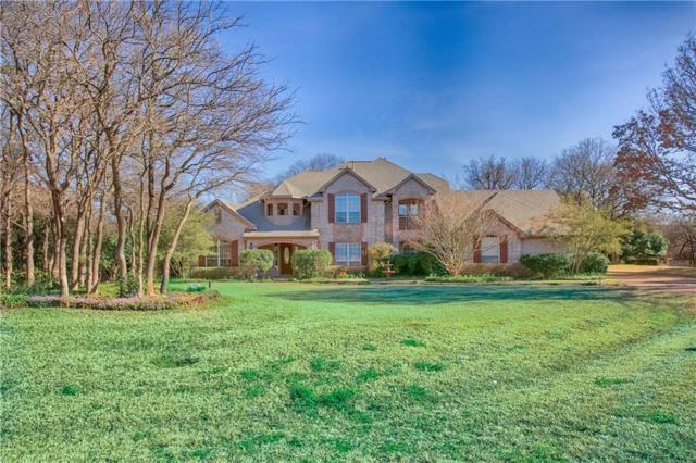 2704 Blue Wood Trail, Flower Mound, TX 75022 (MLS #14028877) :: Real Estate By Design