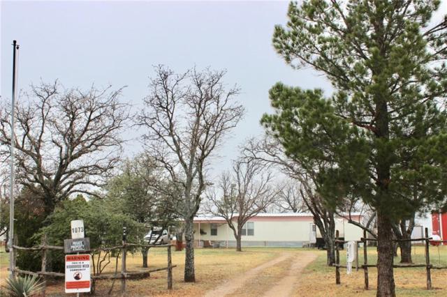 1073 County Road 213, Breckenridge, TX 76424 (MLS #14029727) :: The Chad Smith Team
